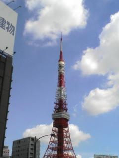 今日はとても良い天気